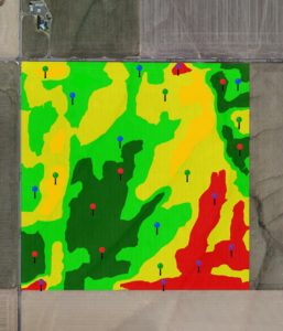 Actual yield map used to locate grid sampling locations